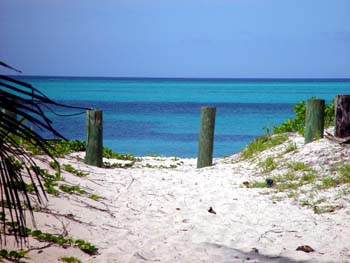 Bahamas Charter Beaches